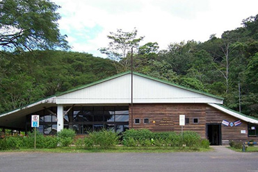 Carara Biological Reserve Tours CostaRica