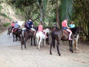 Jaco Beach Horse back Riding