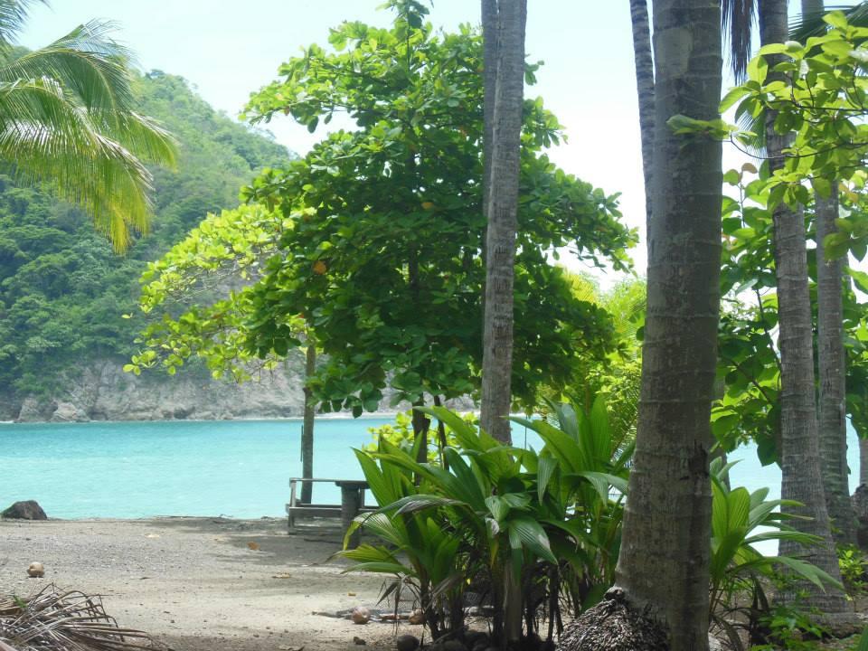 Visiting Totortuga Island