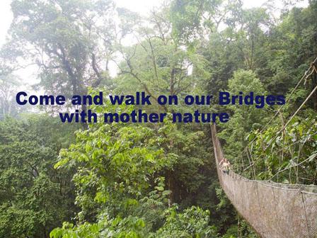 RAIN MAKER AND HANGING Bridges Costa Rica